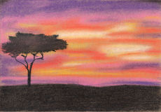 Sumset i Afrika Pastellfärgad målning Arkivfoton