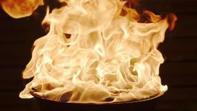 Sumujący węgiel drzewny zapalniczki fluid w grilla ogienia Super zwolnione tempo strza? zdjęcie wideo