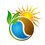 Sun, água, solo e planta Fotografia de Stock Royalty Free