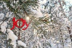 Sun éclate au-dessus d'un scintillement Joy Ornament en hiver Photos libres de droits