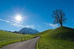 Sun över det Stanserhorn berg Royaltyfri Foto
