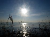 Sun över floden Fotografering för Bildbyråer