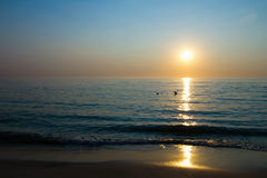 Sun über Seehorizont Stockfotos