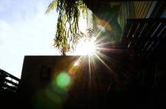 sun Arkivfoton