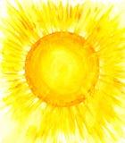 Sun Lizenzfreies Stockbild