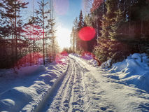 Sun stockfotografie
