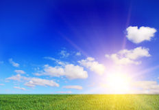 The sun. Cloudy landscape and green field Stock Photography