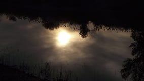 Sun adentro Fotos de archivo