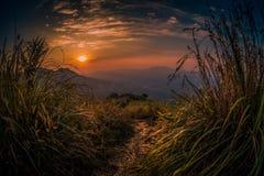 Sun ajustou-se em montes da grama imagens de stock royalty free