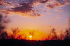 Sun al cielo di alba di tramonto Cielo drammatico luminoso con le nuvole urlo fotografia stock libera da diritti