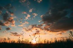 Sun al cielo di alba di tramonto Cielo drammatico luminoso con le nuvole urlo fotografie stock