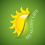 Sun and Aloe Vera Royalty Free Stock Photography