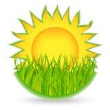 Sun And Grass. Icon Royalty Free Stock Photos