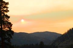Sun attraverso nebbia Immagini Stock
