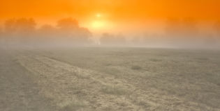 Sun au loin Photo libre de droits