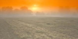 Sun auf dem Feld Lizenzfreies Stockfoto