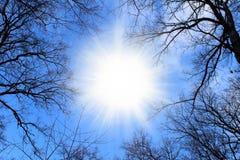 Sun auf einem Hintergrund des blauen Himmels Stockfotos