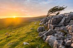 Sun-Aufflackern-aufschlussreiche vibrierende Landschaft an Twistleton-Narbe in North Yorkshire, Großbritannien Stockbilder