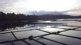 Sun aumenta sobre a estrutura de bambu construída no meio do lago tiro aéreo do zangão, video estoque