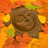 Sun in autumnal leaves. Stock Photography