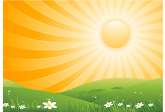 Sun background Stock Photography