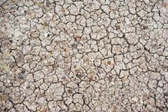 Sun backte Grundkies-Felsen-Ödland-Nationalpark-Felsen Lizenzfreie Stockfotos