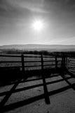 Sun, barrière, bas du sud, campagne, noire et blanche Photographie stock libre de droits