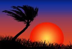 Sun and beach. A portrait of a hot beach with the sun Stock Photo