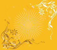 Sun beams. Sun beam surrounded by floral pattern Stock Images
