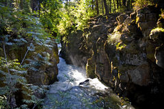 Sun beams down on the Rogue River Gorge Stock Images