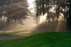 Sun beams in foggy morning Stock Photos