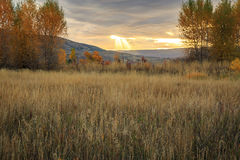 Sun beams with morning light in the Wasatch Mountains. Stock Images