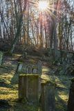 Sun beams at old Jewish cemetery with weathered tombstones, Germany.  stock photo