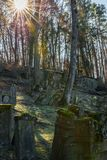 Sun beams at old Jewish cemetery with weathered tombstones, Germany.  royalty free stock photo