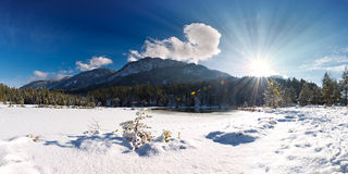 Sun beams shining in idyllic winter scenery Royalty Free Stock Images