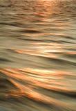 Sun bedeckte Wellen mit einer Kappe Stockfotos