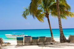 Sun beds for relaxing under coconut palms on a white bezke on a background of azure sea. Stock Photography