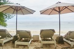 Sun beds with umbrellas on the Bali beach.  stock images