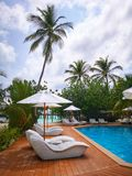 Sun beds and umbrellas by the swimming pool royalty free stock photo