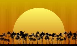 Sun Behind Palm Trees stock illustration