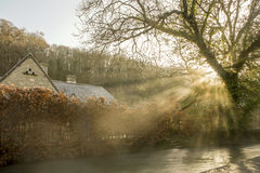 Sun behind a small tree close to a steaming river in Castle Combe Stock Photography