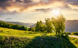 Sun behind the trees on hillside. Lovely nature scenery in mountainous area at sunset Stock Photos