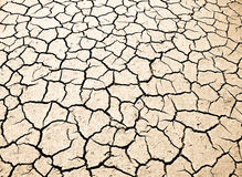 Sun bleached dry cracked earth. Section of a dried up river bed. Showing the sun's glare off the cracked mud Stock Photo
