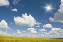 The sun in blue sky above of floral meadow. Stock Images