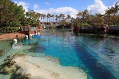 Sun, blue sky and puffy clouds at Atlantis hotel, Paradise Island, Bahamas royalty free stock images