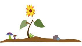 Sun-Blume Vektor Abbildung