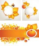 Sun-Blume mit Bienen- und Honigbroschüreplan Stockfotos