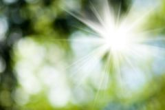Sun in the blurry natural green background closeup Royalty Free Stock Photo