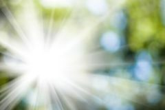 Sun in the blurry natural green background Royalty Free Stock Photos