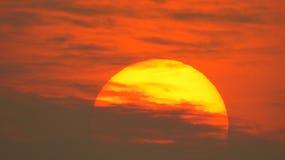 Sun bonito Imagem de Stock Royalty Free